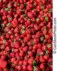 fresas, plano de fondo