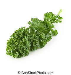 fresco, aislado, plano de fondo, hojas, blanco, orgánico, encima, col rizada, verde