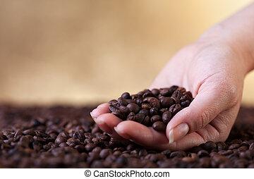 fresco, assado, feijões café, em, mulher, mãos