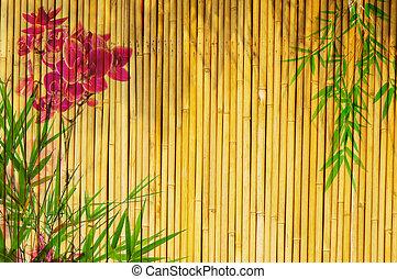 fresco, bambu, fundo, orquídeas