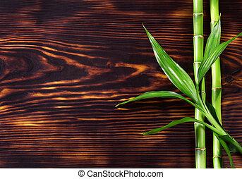 fresco, bambu, verde