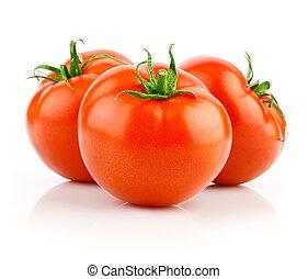 fresco, bianco, isolato, pomodori rossi