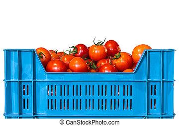 fresco, blanco, cajón, aislado, tomates