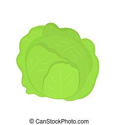 fresco, cavolo, appartamento, vettore, illustrazione, isolated., stile, verdura, verde