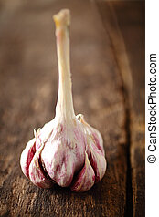 fresco, cloves, di, aromatico, aglio