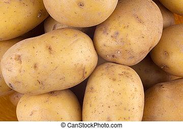 fresco, colhido, tubers, amarela, batata