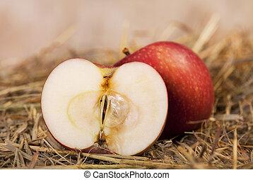 fresco, corte, maçã