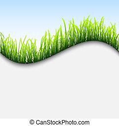 fresco, erba, fondo