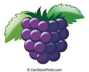 fresco, foglie, uve bianche
