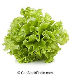 fresco, folhas, alface, salada, grupo