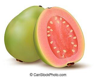 fresco, fruit., goiaba, verde, vector.