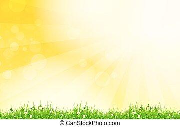 fresco, grama verde, com, amarela, bokeh