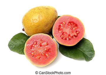 fresco, guayaba, fruta, con, hojas, blanco, plano de fondo