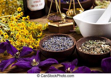 fresco, hierbas medicinales, en, escritorio de madera