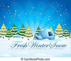 fresco, inverno, neve