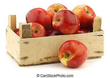 """fresco, """"jazz"""", manzanas, holandés"""