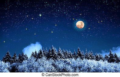 fresco, luna, coperto, inverno, pieno, valle, snow., salita, sopra