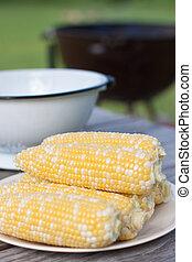 fresco, maíz, blanco, placa