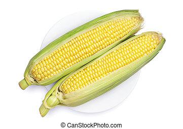 fresco, maíz, en, placa
