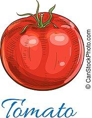 fresco, maduro, tomate vermelho, com, folhas, esboço, ícone