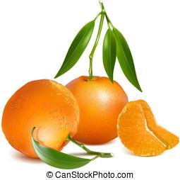 fresco, mandarina, fruits, con, hojas verdes