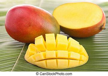 fresco, mango