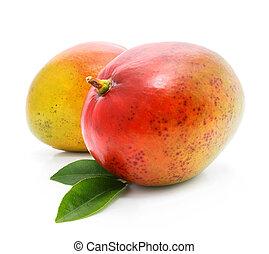 fresco, mango, frutte, con, verde, mette foglie