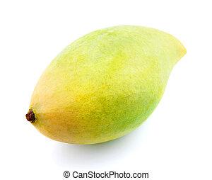 fresco, mango, waterlily