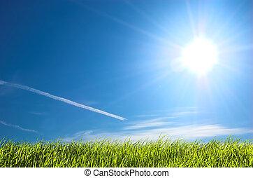 fresco, pasto o césped, y azul, soleado, cielo
