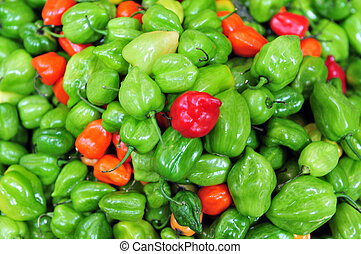 fresco, peperoncini rossi