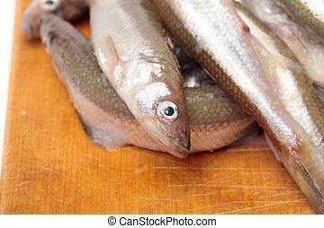fresco, pez,  smelts