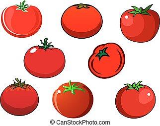 fresco, pomodoro, isolato, verdura, rosso