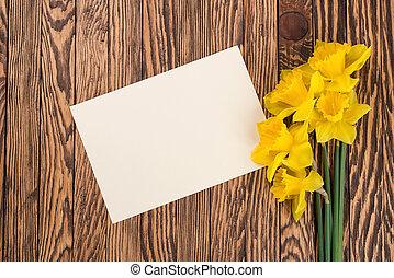 fresco, primavera, amarela, narcisos silvestres, fl