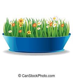 fresco, primavera, hierba verde, en, un, olla