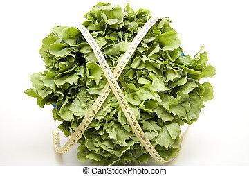fresco, salada verde