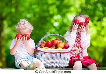 fresco, scegliere, bambini, mele