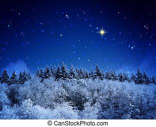 fresco, sopra, inverno, coperto, luna, snow., pieno, salita, valle