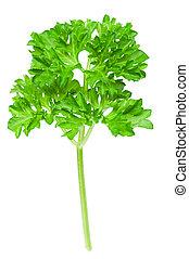fresco, spices:, prezzemolo, foglie