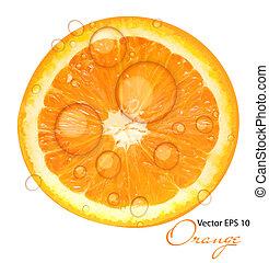fresco, succoso, sfondo arancia, vettore, illustrazione