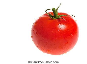 fresco, tomate, isolado