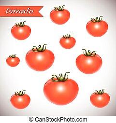 fresco, tomatoes., rosso