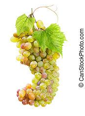 fresco, uva, con, hojas