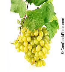 fresco, uva, con, hojas verdes, aislado, fruta