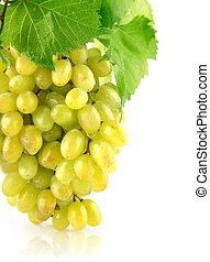 fresco, uva, grupo, aislado, fruta