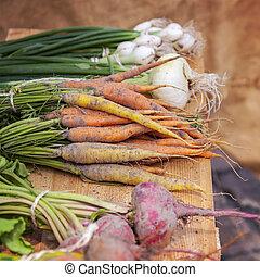 fresco, vegetais raiz