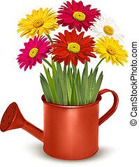 fresco, verano, flores, en, naranja, regar, can., vector,...