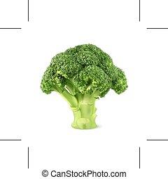 fresco, verde, bróculi