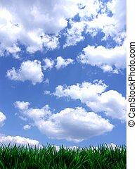 fresco, verde, gras, con, cielo azul