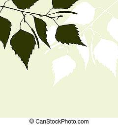 fresco, verde, leaves., fundo, vidoeiro