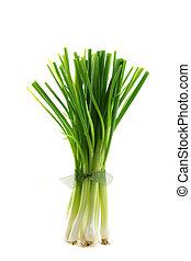 fresco, verde, salte cebolla